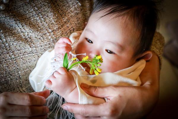 菜の花を持つ男の子赤ちゃん 100日祝い・お食い初め